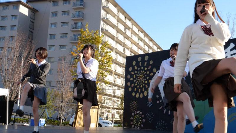 純白のアスター(追手門学院大学) 合同学園祭 2019/11/02 04:53
