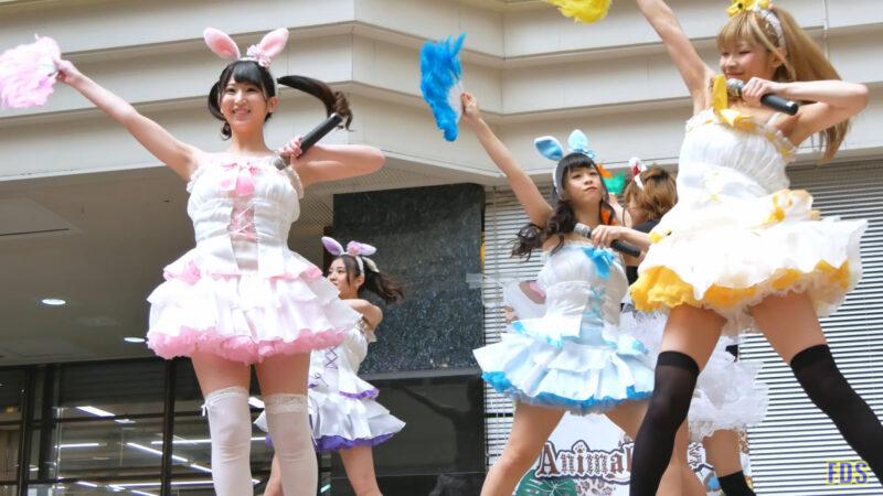 [4K] うさロイド 「さよならマスタード」 アイドル ライブ Japanese idol group 00:18
