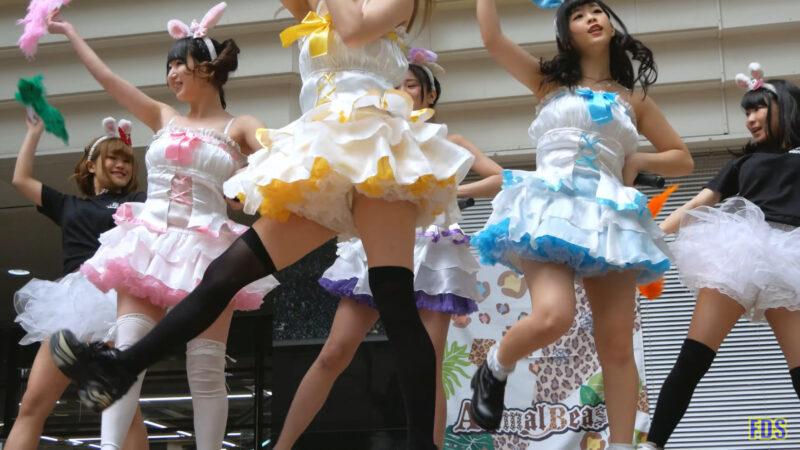 [4K] うさロイド 「さよならマスタード」 アイドル ライブ Japanese idol group 00:38