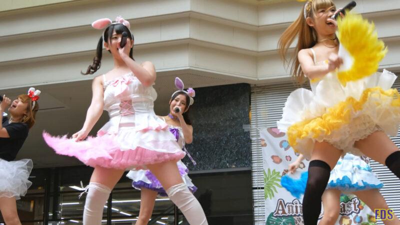 [4K] うさロイド 「さよならマスタード」 アイドル ライブ Japanese idol group 03:37